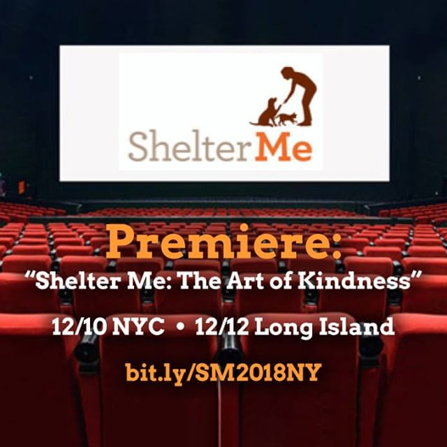 ShelterMe Premiere NYC 2018