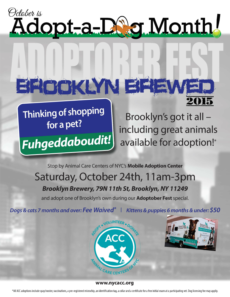 Adoptoberfest flyer