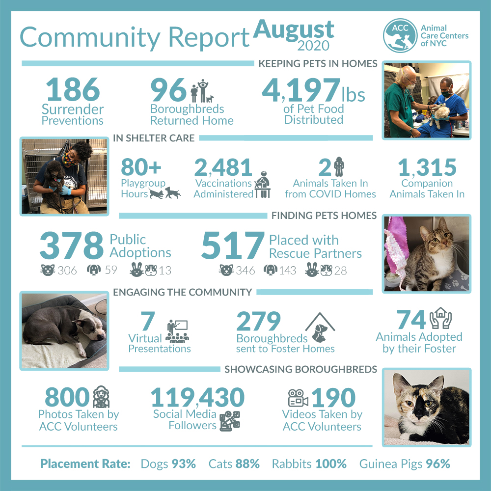 August Community Report
