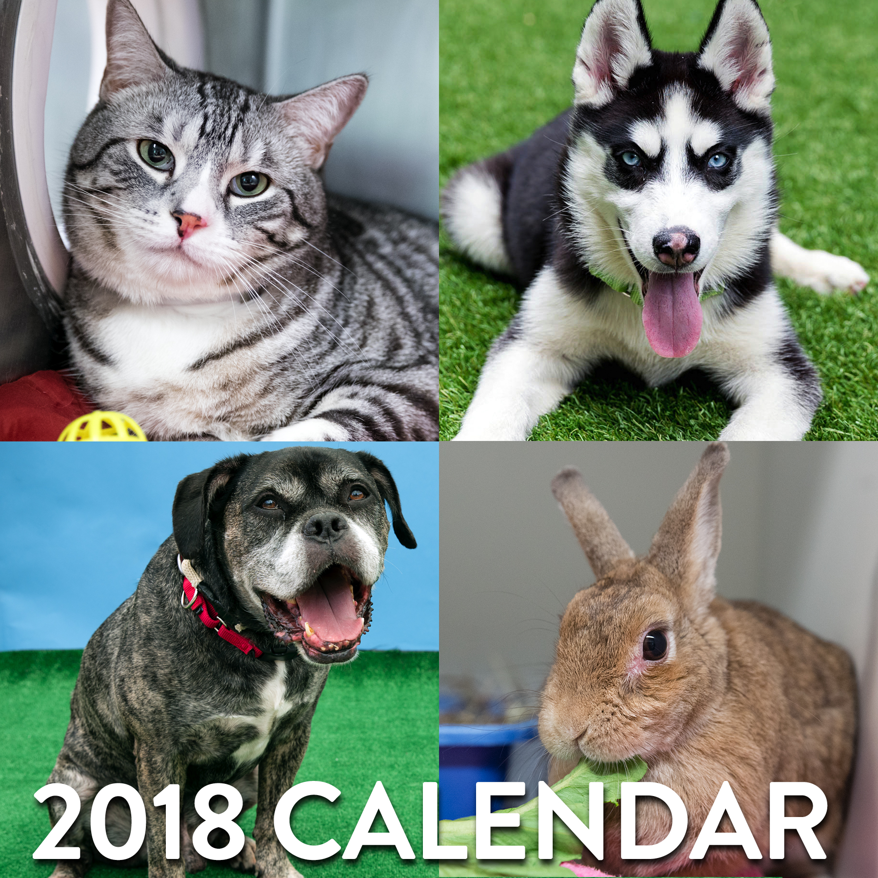 Calendar post graphic2.jpg