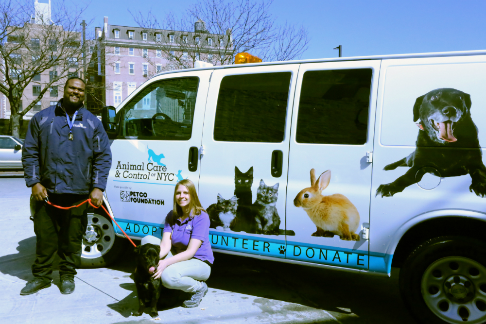 Sanjay, Sonja, Ace by Petco placement vehicle