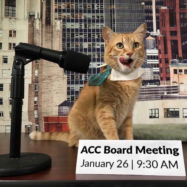 January 2021 Board Meeting