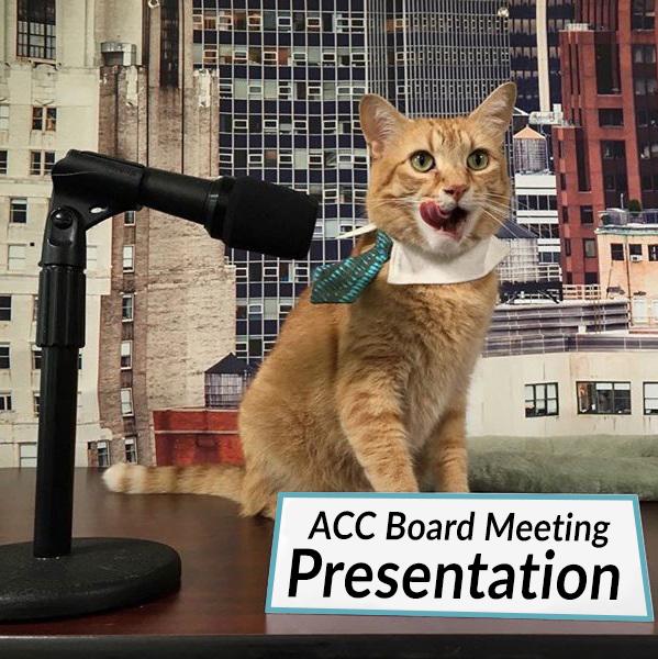 Jan 24 Board Meeting Presentation