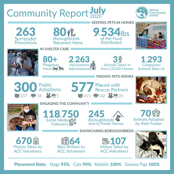 Community Report July 2020