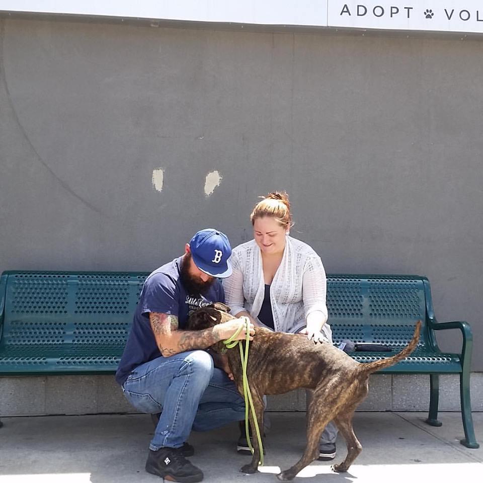 Kinu with adopters