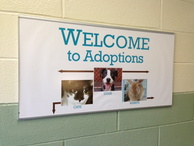 Manhattan Care Center adoptions sign