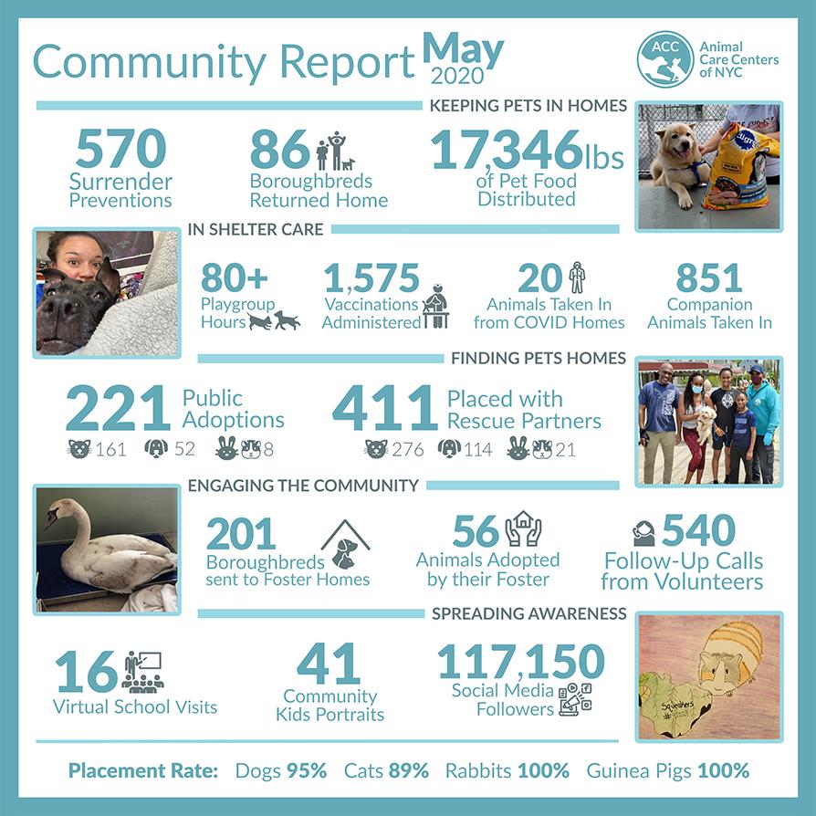 May 2020 Community Report!
