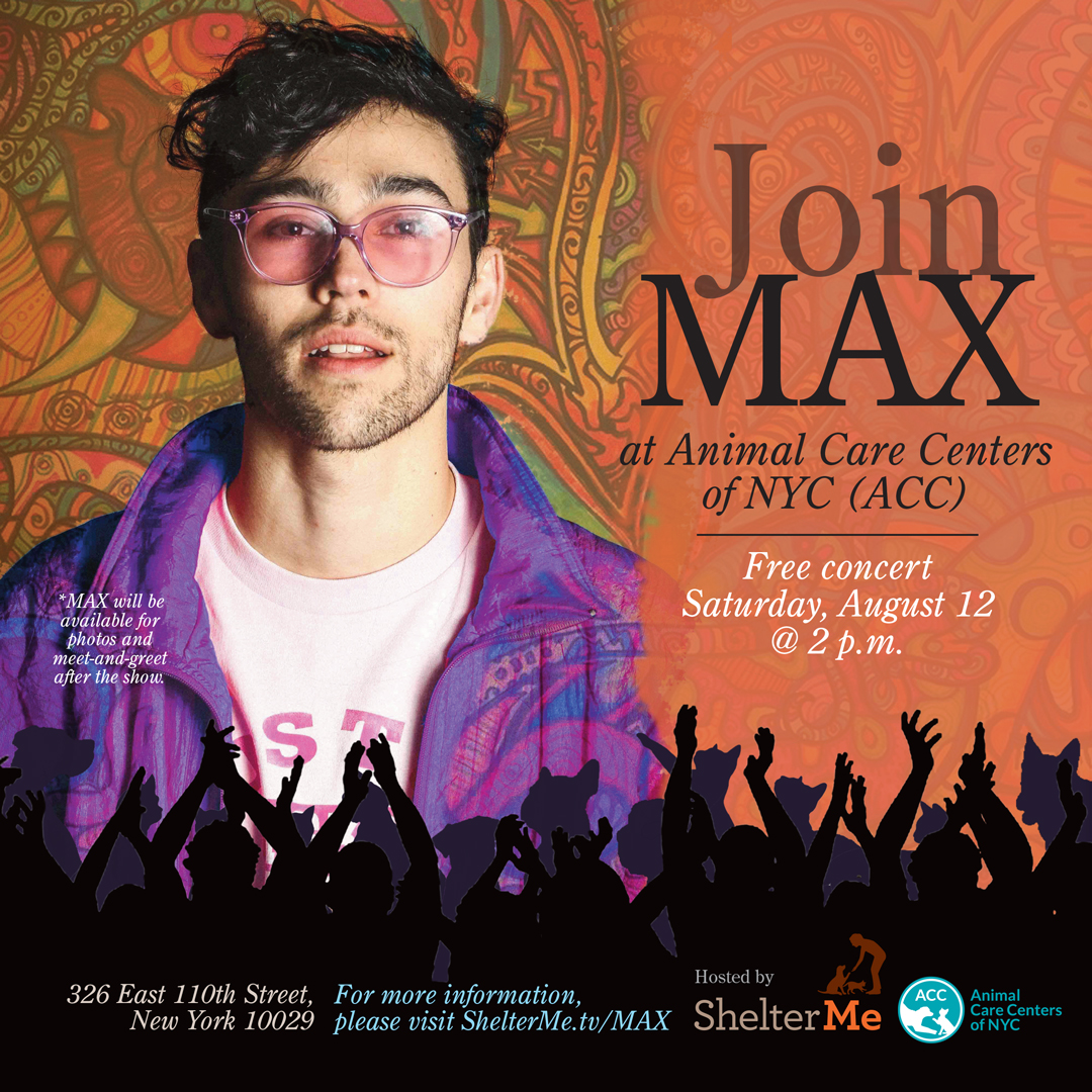 MAX concert at ACC