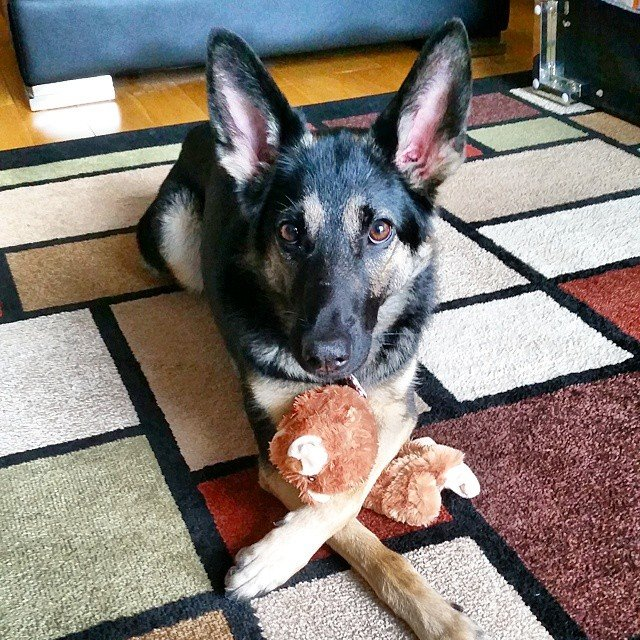 Mia with toy