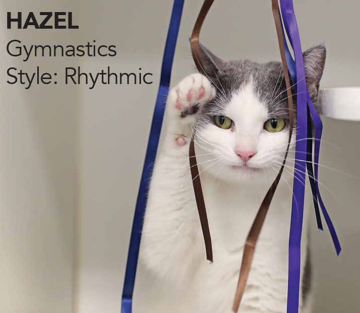 Hazel, Olympic Champion