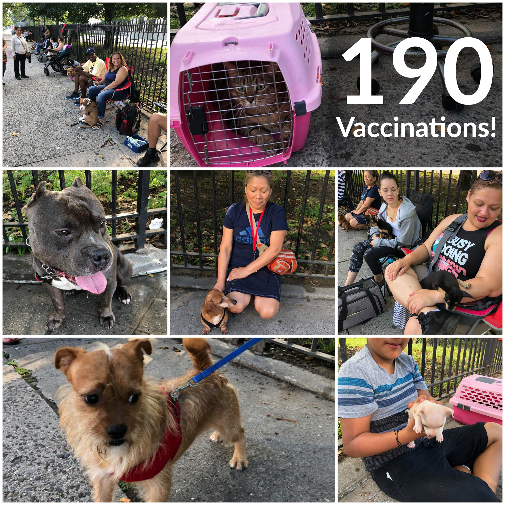 Poe Park Vaccination