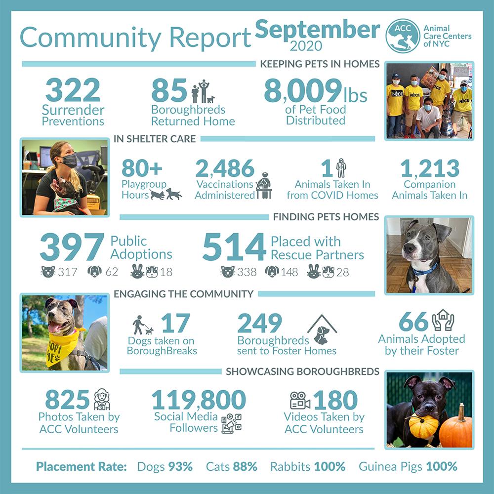 September 2020 Community Report