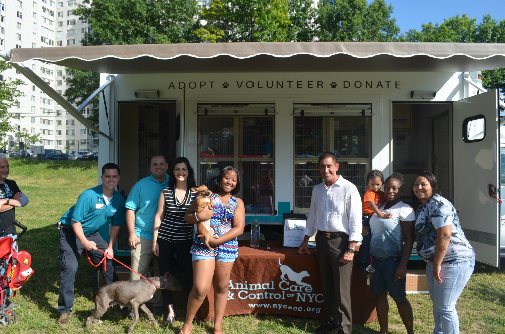 Mobile Adoption Center in the Bronx