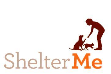 Shelter Me screenshot2