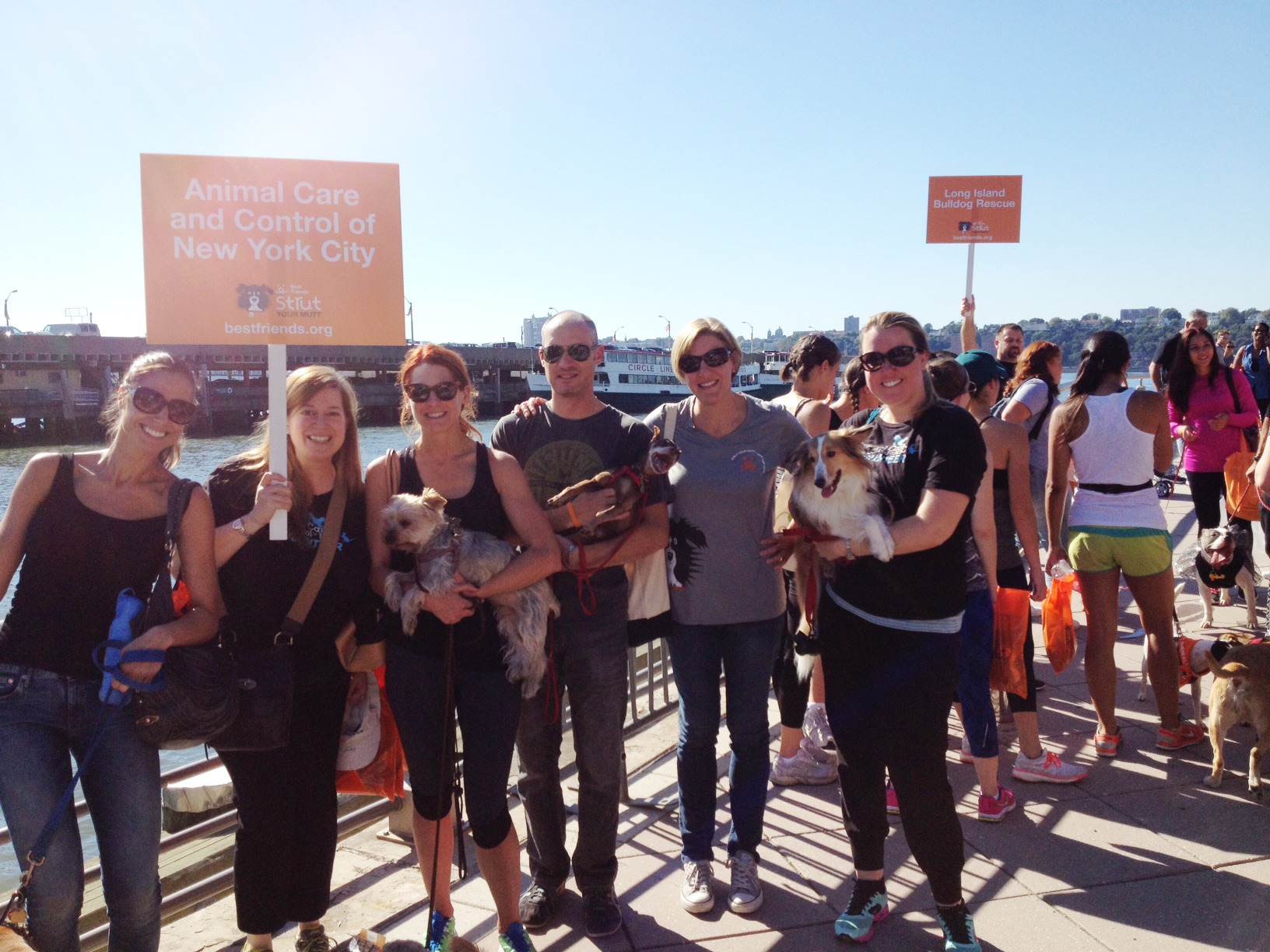 Team AC&C at Strut Your Mutt