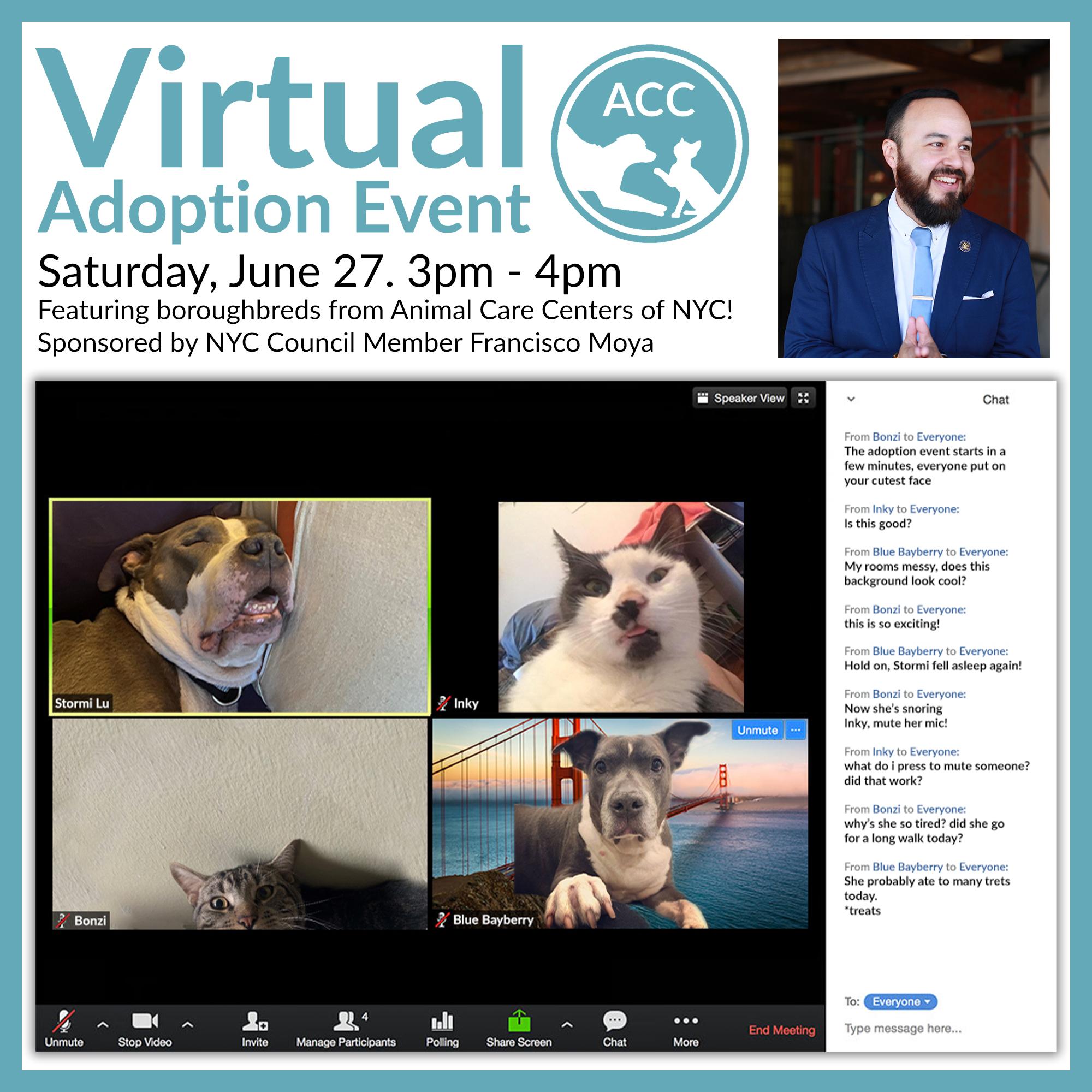 Virtual Adoption Event