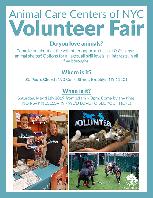 Volunteer Fair May 2019