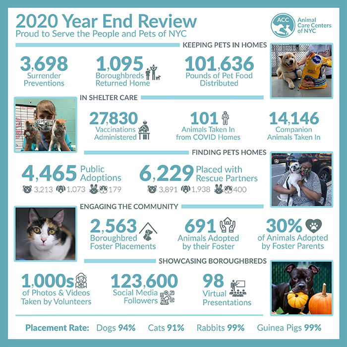 Community Report Year End 2020