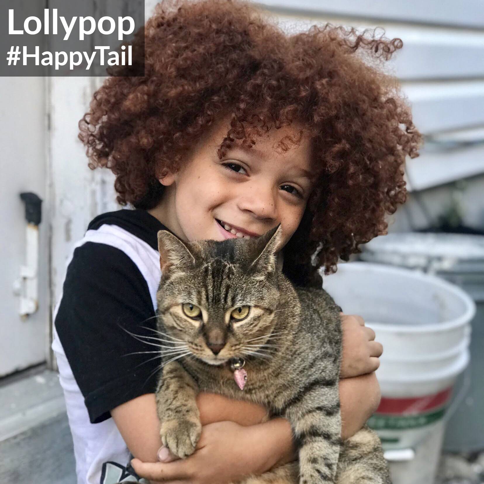Lollypop Happytail