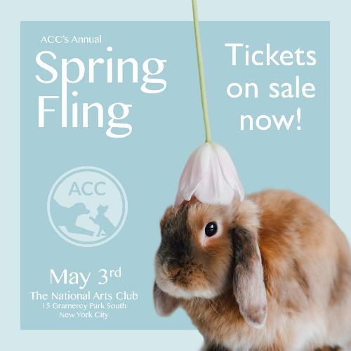 Spring Fling Tickets on Sale