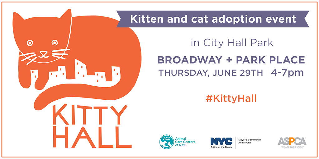 Kitty Hall June 29, 2017
