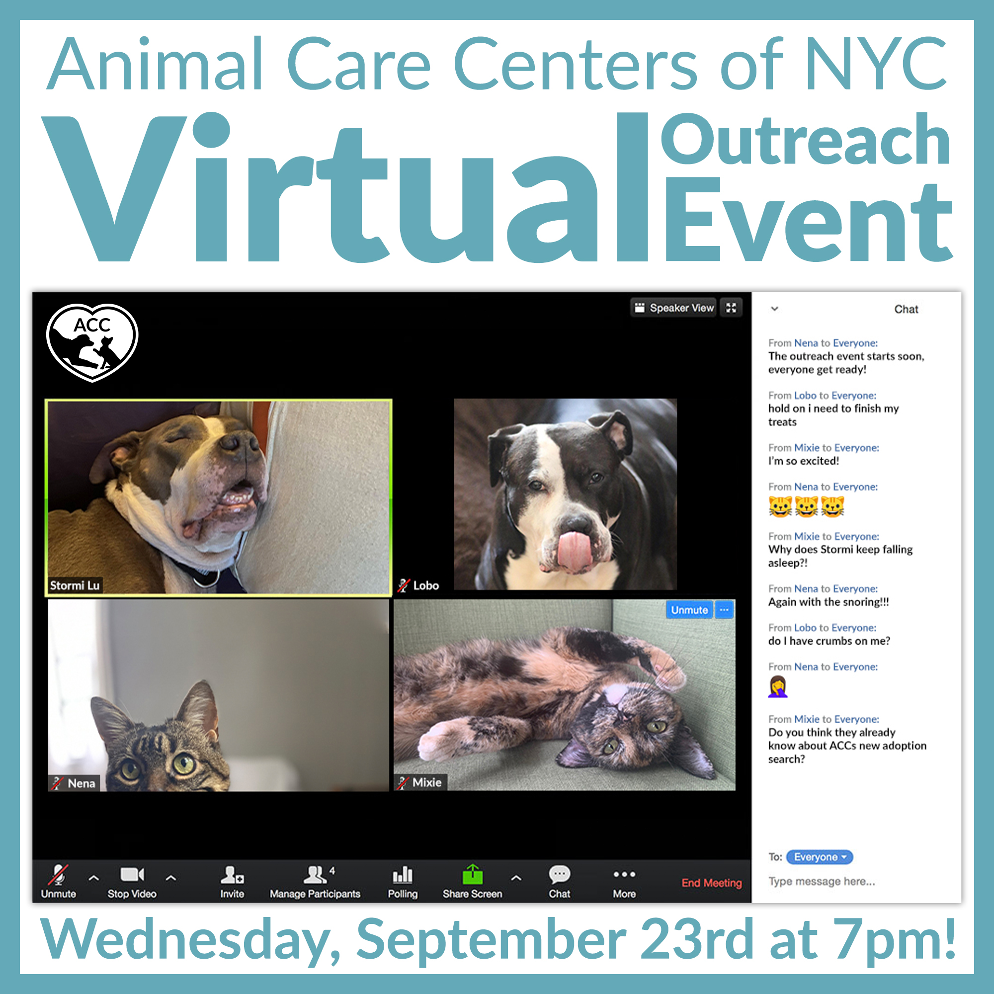 Virtual Outreach Event